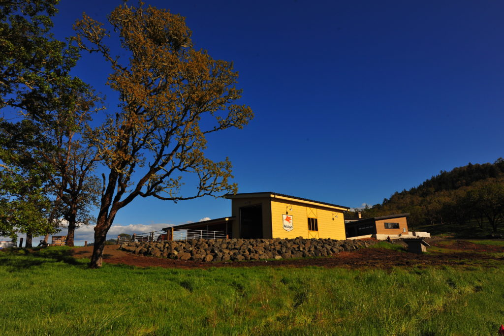 Image of contemporary barn, blue sky and pasture foreground