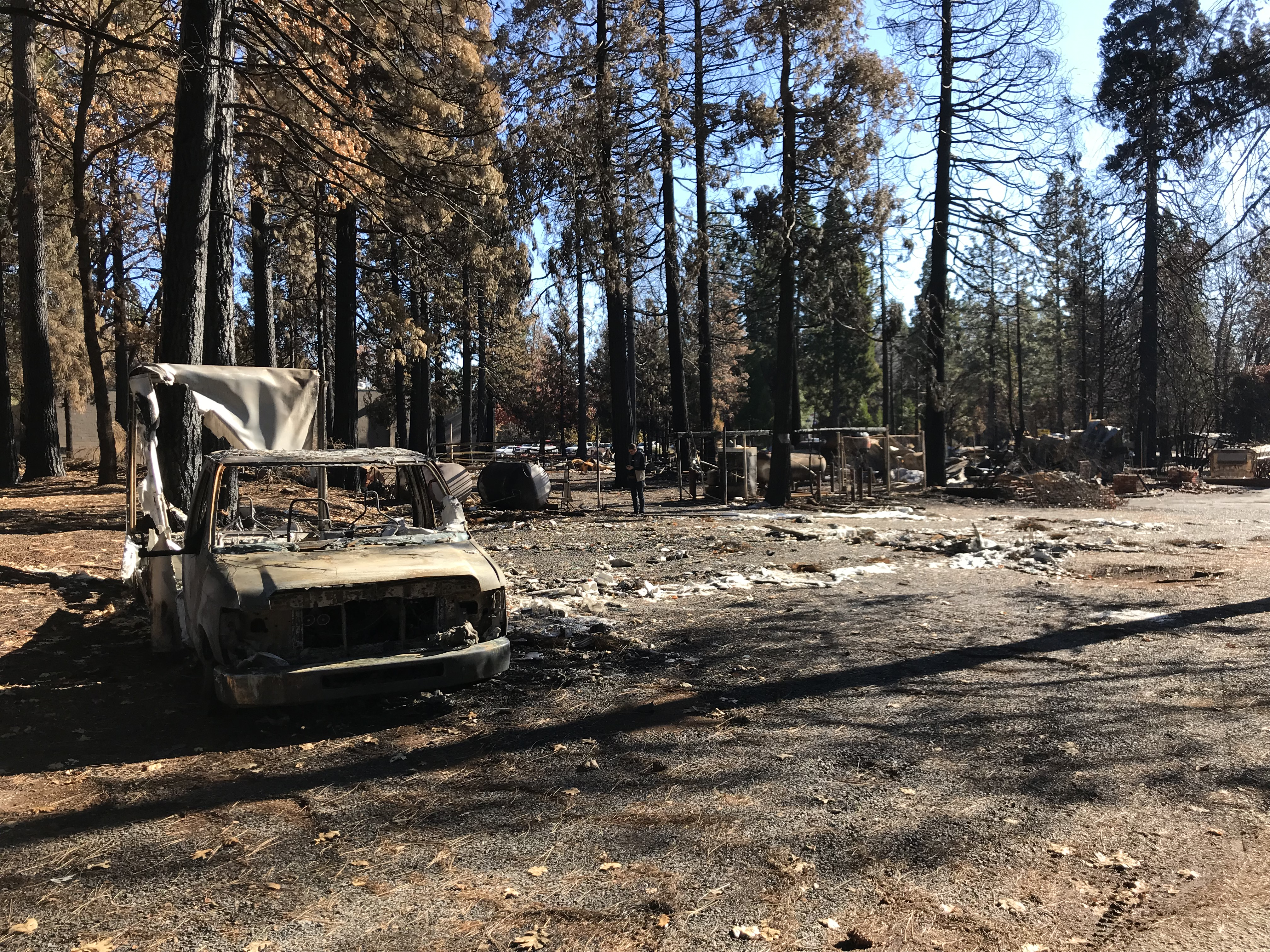 """Unsung hero saves 28 lives during the Paradise """"Camp Fire"""""""