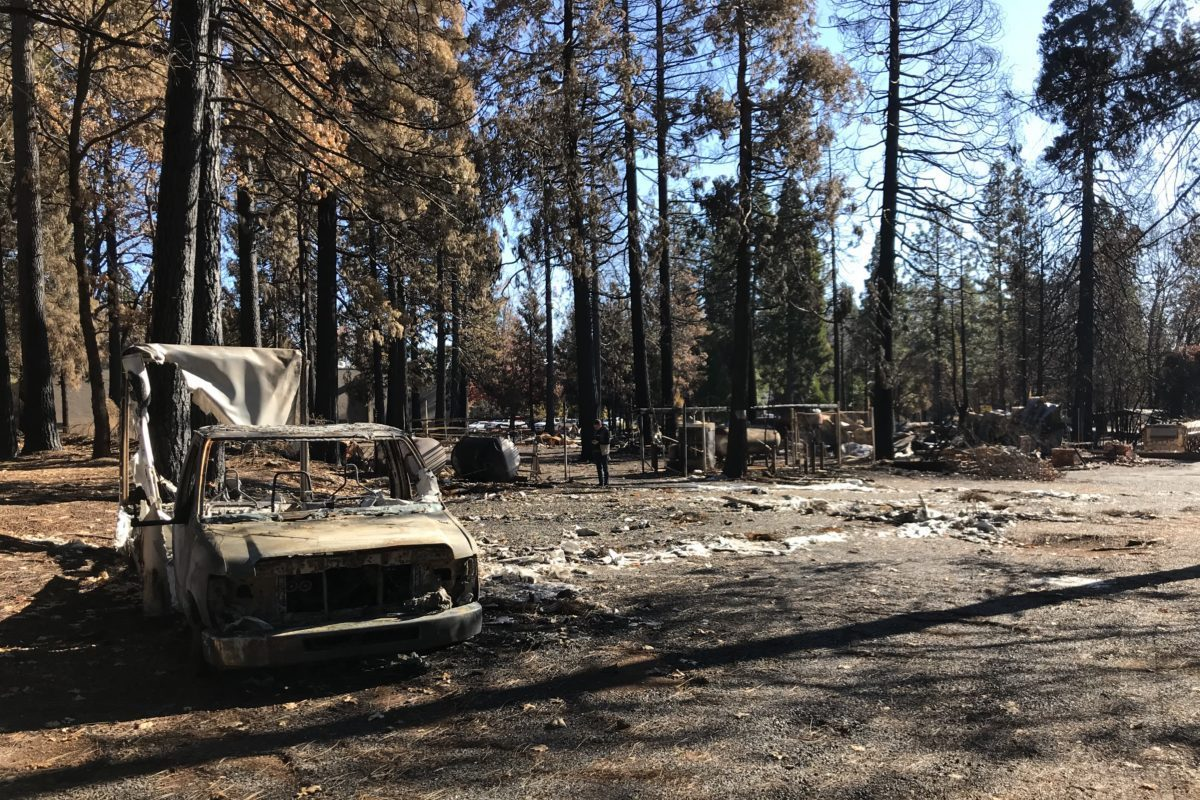 "Unsung hero saves 28 during the Paradise ""Camp Fire"""