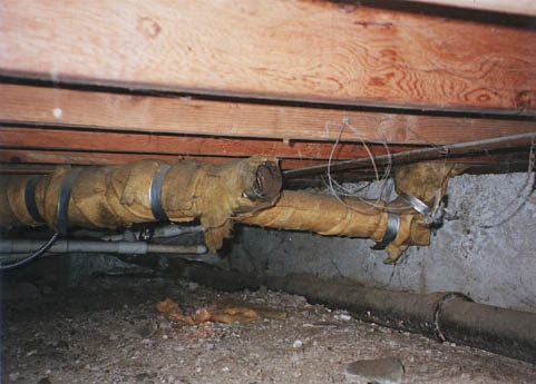 Crawlspace, the filthiest place in your home