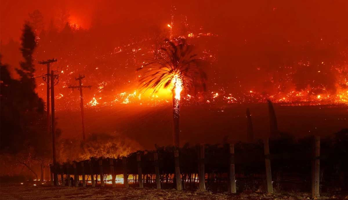 How bad were Western fires in 2020?